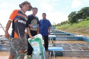 ชาวอาจสามารถยึดเลี้ยงปลาในกระชังริมแม่น้ำโขง  สานโครงการ9101ฯมุ่งพัฒนาอาชีพอย่างยั่งยืน