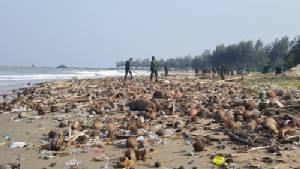 ทหารนับร้อยนายระดมกู้วิกฤตขยะหาดวนอุทยานปราณบุรี เป็นวันที่ 5 แล้ว