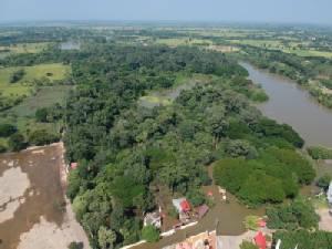 จนท.ลุยน้ำดูความเป็นอยู่ลิงนับพันในวนอุทยานโกสัมพี หลังถูกน้ำท่วมขังเรียบกว่า 120 ไร่