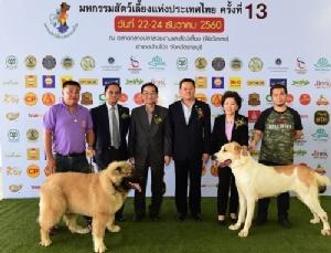 """ชวนเที่ยวงาน""""มหกรรมสัตว์เลี้ยงแห่งประเทศไทย ครั้งที่ 13"""" จ.ราชบุรี"""
