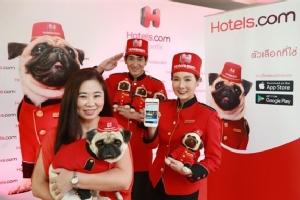 Hotels.com เปิดตัวแบรนด์แอมบาสซาเดอร์สุนัขพันธุ์ปั๊กในไทย จับมือโฮเต็ล วันซ์ แบงค็อก จัดห้องพักธีม 'ปั๊ก' ครั้งแรกในไทย