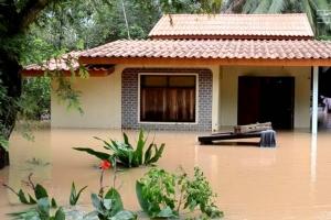 น้ำท่วมชุมพร ปศุสัตว์ระดมกำลังเร่งช่วยเหลือเกษตรกร