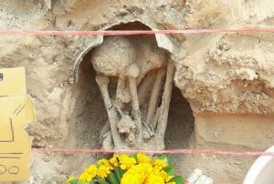 """แตกตื่นทั้งบาง ชาวเมืองช้างแห่ดู """"ปลีกล้วย"""" โผล่จากใต้ดินคล้ายพญานาค จุดพบกระดูกมนุษย์โบราณ 1,500 ปี"""