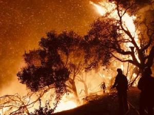 ไฟป่าแคลิฟอร์เนียยังไม่สิ้นฤทธิ์ เผาบ้านเรือนวอดเฉียด 800 หลัง