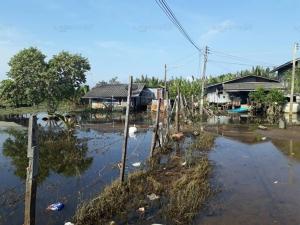 โรคฉี่หนูคร่าชีวิตชาวบ้านตายแล้ว 1 ศพ จากสถานการณ์น้ำท่วมขังริมทะเลสาบสงขลา