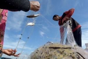 องค์กรสิ่งแวดล้อมชี้แผนผุดเขื่อนในจีนกระทบปลายน้ำโขง ชาวบ้านโอดปลาลดทุกปี