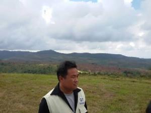 ตะลึง..ซากุระไทยภูลมโลบานสะพรั่ง แต้มหุบเขาสีชมพูเต็มรอยต่อ 3 จังหวัดแล้ว