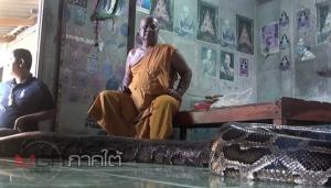"""ชาวบ้านศรัทธา! """"แม่ทองคำ"""" งูหลามยักษ์รักษาคนป่วย ที่วัดห้วยระย้านครศรีฯ"""