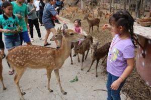 รู้ยัง! วันเด็กปีนี้สวนสัตว์ขอนแก่นเปิดให้เด็กชมฟรี