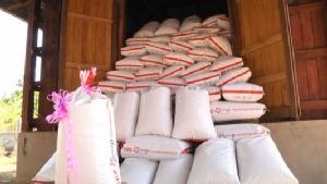 นครพนมตั้งธนาคารข้าวเฉพาะกิจช่วยเหลือชาวบ้านนาล่มน้ำท่วมหนักปีกลาย
