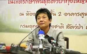 ผอ.กรมอุทยานฯ ปัดรู้จักบิ๊กอิตาเลียนไทยเป็นการส่วนตัว แจ้ง 6 ข้อหาถือเป็นพฤติกรรมที่ร้ายแรง
