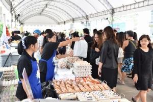 พาณิชย์ระดมสินค้าเกษตรลดราคาต้อนรับเทศกาลตรุษจีน