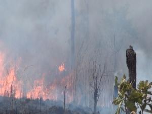 ลามเป็นพันไร่..ไฟไหม้ป่าขุนวังฯ 3 วันติด สวนป่าลำปางวอดแล้ว 200 ไร่
