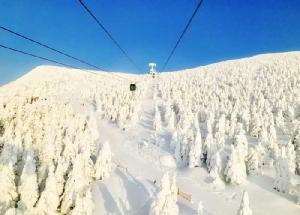 """ตะลุย """"โทโฮกุ"""" ฤดูหนาว ตื่นตาเหล่าปีศาจหิมะ สนุกตราตรึงใจยามากาตะ"""
