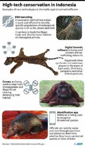 นักอนุรักษ์ขนสารพัดแกดเจ็ตต่อกรนักล่าสัตว์ป่าในอินโด