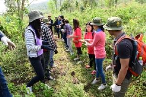 """CPF เดินหน้าฟื้นฟู """"ป่าต้นน้ำ"""" ลุ่มน้ำป่าสัก จิตอาสาผนึกชุมชนรักษาสิ่งแวดล้อมยั่งยืน"""