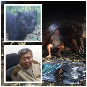 2 นักกฎหมายฟันธง เปรมชัยไม่รอด หลักฐานมัดคดีฆ่าเสือดำ ติดคุก 5 ปี!!