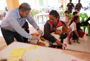โคราชประกาศสงครามหมาว้อ! ผู้ว่าฯ สั่งจับสุนัขฉีดวัคซีนป้องกันพิษสุนัขบ้าทั้งจังหวัด ตั้งศูนย์ตอบโต้ทุกอำเภอ
