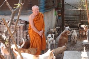 ทนไม่ได้!! ผู้ใจบุญบริจาคเงินซื้อวัคซีนป้องกันพิษสุนัขบ้าให้แก่วัดทุ่งตาล ราชบุรี