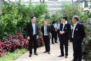"""จับมือสร้าง """"ธนาคารชีวภาพแห่งชาติ"""" เก็บรักษาพันธุกรรมพืชไทย"""