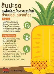 สับปะรด ผลไม้ที่อุดมไปด้วยเอนไซม์ ช่วยย่อย-สบายท้อง