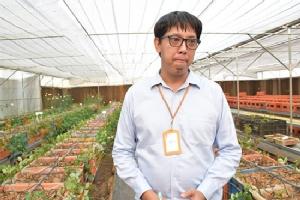"""โรงเรือนอัจฉริยะผลิตไม้ดอก """"สูดดมได้"""" ปลอดยาฆ่าแมลง"""