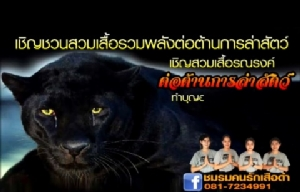 """ปธ.ชมรมคนรักเสือดำชวนร่วมทำบุญอุทิศส่วนกุศลให้ """"เสือดำ"""""""