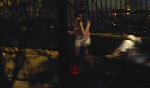 แอบมาส่องซอยนานา นักข่าวสาวเวียดลุ้นฮานอยโฮจิมินห์ทำแบบไทย หยุดไล่จับน้องๆ