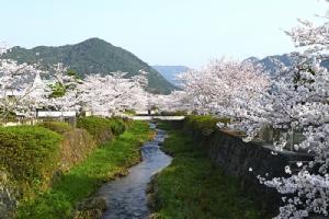 """""""ยามากุจิ"""" เกียวโตฝั่งตะวันตกสวยคลาสสิก จุดดักฝันของนักปั่นจักรยาน/ปิ่น บุตรี"""