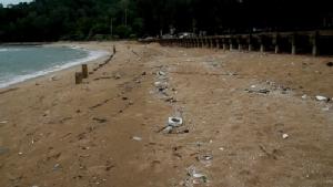 มาอีกแล้ว!! ขยะจำนวนมากถูกคลื่นซัดเกลื่อนหาดแหลมเสด็จ จ.จันทบุรี