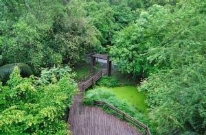 ปีนี้คนกรุงเทพฯ จะได้พื้นที่สีเขียว 6.38 ตารางเมตรต่อคน