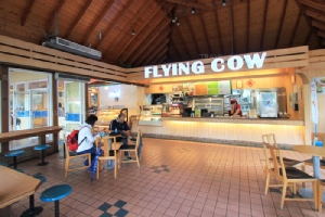 """สดจากเต้า ชิมเมนูเด็ดจากนมวัว ที่ """"Flying Cow Ranch"""" ไต้หวัน"""