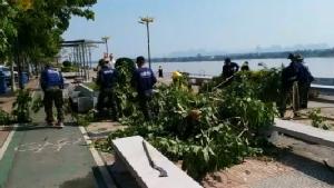 ระดมกำลังทุกภาคส่วนฟื้นฟูซ่อมแซมความเสียหายจากฤทธิ์พายุถล่มเมืองนครพนม