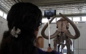 Mammoth show