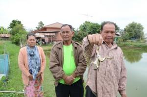 ชี้ข้าราชการ-ผู้นำชุมชน เอี่ยวหาผลประโยชน์โครงการ 9101 ต.บัวบาน