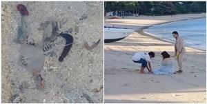 เดือดร้อนธรรมชาติ! คู่รักเกาหลีถ่ายพรีเวดดิ้งริมหาดเมืองภูเก็ต นำสัตว์ทะเลมากักขัง สุดท้ายปล่อยตาย