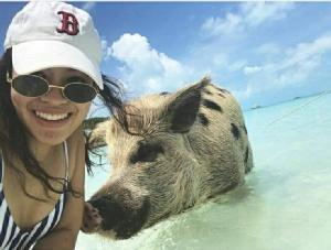 พลอย-ณัฐพร เซลฟีกับหมูชายหาด แถมยิ้มร่ากับฉลามที่บาฮามาส