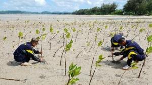 สอ.รฝ. รวมพลังกู้วิกฤตขยะล้นหาด คืนชีพธรรมชาติสู่ท้องทะเล เนื่องในวันสิ่งแวดล้อมโลก