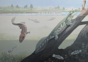 พบอีกกุญแจไขปริศนาสัตว์ดึกดำบรรพ์วิวัฒนาการจากปลาขึ้นบก