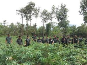 ทสจ.มุกดาหารบุกตรวจสอบพื้นที่ป่าต้นน้ำหลังถูกชาวบ้านบุกรุกกว่า 300 ไร่