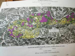 เห็นแสงรำไร! ผ่าทางตันสวนสักปางมะโอทับที่ป่า กก.ชงยกที่ 1.5 พันไร่คืนชาวบ้าน