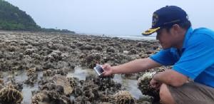 ตื่นตา!! น้ำทะเลประจวบฯ ลดต่ำสุดรอบ 20 ปี ส่งผลแนวปะการังโผล่ที่เกาะทะลุ