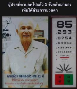 """กรณีศึกษาจักษุแพทย์ไทย """"ผู้ป่วย 3 ราย หายตาบอดด้วยการนวดตา"""" / ปานเทพ พัวพงษ์พันธ์"""