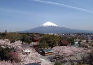 รู้หรือไม่ ยอดภูเขาไฟฟูจิอยู่ในจังหวัดไหนของญี่ปุ่นกันแน่??
