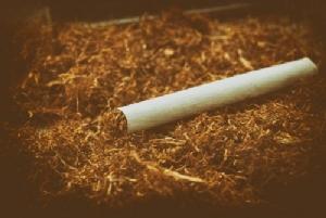 จี้รัฐเร่งขึ้นภาษียาเส้น หนุนไทยเดินหน้าลดจำนวนผู้สูบ 30% ตามเป้า WHO