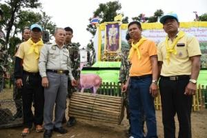 กรมอุทยานฯ ปล่อยละอง-ละมั่งไทย เฉลิมพระเกียรติในหลวง รัชกาลที่ ๑๐