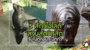 5 สัตว์ไฮไลต์ สวนสัตว์ดุสิต รีบไปดูก่อนจะปิดตัว