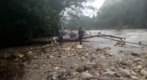 พบกระทิงป่าทุ่งใหญ่ฯ ตายเพิ่มอีก 2 ตัว คาดเสียชีวิตจากภัยน้ำป่าไหลหลาก(ชมคลิป)