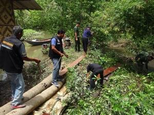 จนท.บุกตรวจยึดไม้ป่าสงวนฯ ถูกซ่อนอำพรางริมคลองป่าชายเลนเมืองสตูลอื้อ