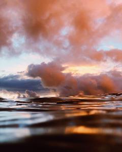รวมภาพถ่ายช่างภาพมืออาชีพจาก iPhone ฉลองวัน World Photography Day